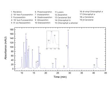 Chromatogram Example