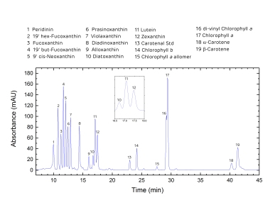 Chromatogram Example