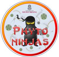 cropped-big-phyto-ninja-3